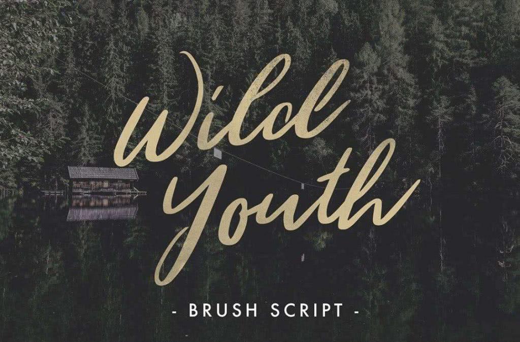 fonte gratuita wild youth para baixar