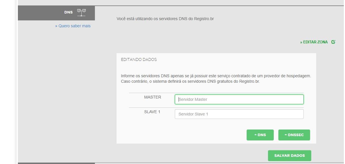informar ns do greengeeks no registro.br