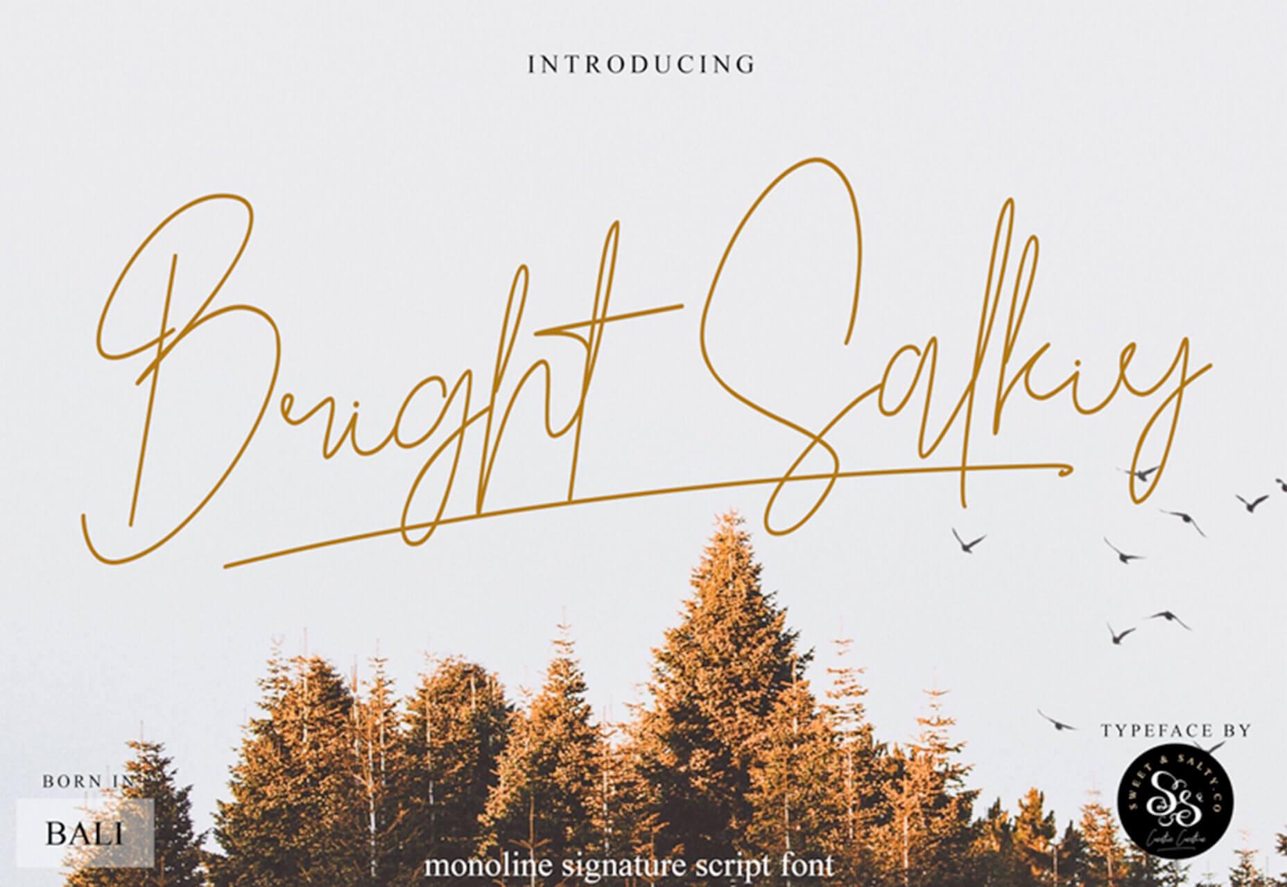 fonte Bright Salkiy